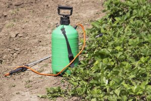 Roundup Dispenser